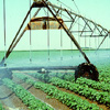 Agricultural Water Conservation Loans