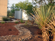 Completed system and native garden at the residence.