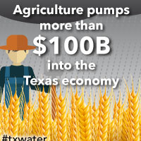 Agriculture pumps more than $100 billion into the Texas economy. In 2011, the drought hit hard. Agricultural losses were more than $7.6 billion. <a href='/newsmedia/infographics/doc/Economy_and_agriculture.pdf'>Download Infographic</a>