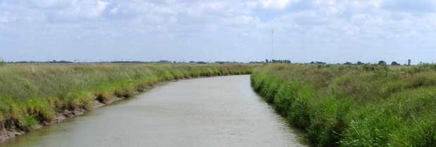 Lower Rio Grande Valley Texas Water Development Board