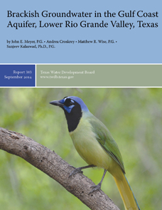 Report 383 - Brackish Groundwater in the Gulf Coast  Aquifer, Lower Rio Grande Valley, Texas, September 2014